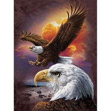 124+  Gambar Keren: Wallpaper Burung Elang 3d